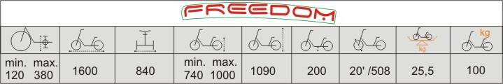 Balian rower trójkołowy dla młodzieży freedom