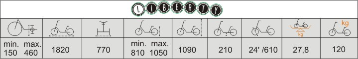 Balian rower trójkołowy vermeiren liberty
