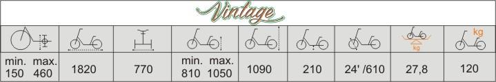 Balian rower trójkołowy dla dorosłych vermeiren vintage